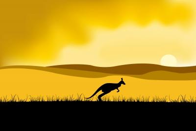 Australie, animal emblématique: le kangourou! Choc culturel et déménagement en Australie